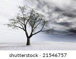 Bare Tree On Barren Snow...