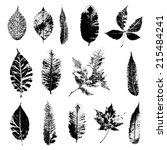 Leaf Silhouette Collection ...