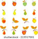 apples  pears  fruit vectors ...   Shutterstock .eps vector #215517001