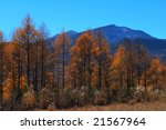 the panorama of the turning... | Shutterstock . vector #21567964