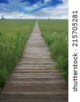 wood bridge wild landscape... | Shutterstock . vector #215705281
