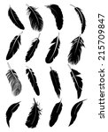 feather icons | Shutterstock .eps vector #215709847