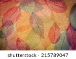 autumn background. fall leaves... | Shutterstock . vector #215789047