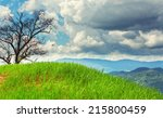 death trees stand on hight... | Shutterstock . vector #215800459
