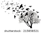 Bare Tree With Flying Birds....