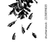 black and white silhouette of... | Shutterstock .eps vector #215859835