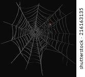 vector black widow spider on...   Shutterstock .eps vector #216163135