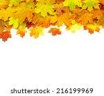 autumn maple leaf | Shutterstock . vector #216199969