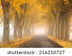Pomerania  Poland  Autumn Road.