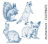 animals drawings set isolated... | Shutterstock .eps vector #216298651