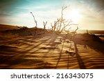 desert landscape with dead... | Shutterstock . vector #216343075