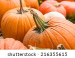 Raw Multicolored Pumpkins As A...