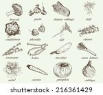 set of vector icons on the... | Shutterstock .eps vector #216361429