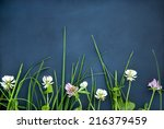 black background with flowers...   Shutterstock . vector #216379459