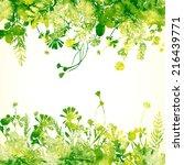 green summer leaves   vector...   Shutterstock .eps vector #216439771