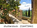 roses on a balcony  cityscape... | Shutterstock . vector #216473461