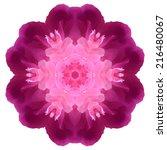 flower mandala isolated on... | Shutterstock . vector #216480067