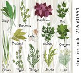set of vector herbs and spices... | Shutterstock .eps vector #216501991