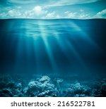 underwater coral reef seabed... | Shutterstock . vector #216522781