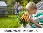 boy holding bunch of carrots... | Shutterstock . vector #216585277