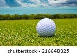 golf ball on green grass with...   Shutterstock . vector #216648325