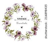 wreath of convolvulus  ... | Shutterstock . vector #216898435
