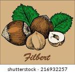 nut filbert | Shutterstock .eps vector #216932257