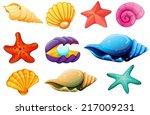 illustration of a shell...   Shutterstock .eps vector #217009231