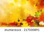 beautiful autumn background...   Shutterstock . vector #217030891