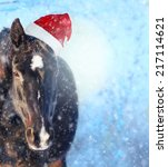 Black Horse With Santa Hat In...