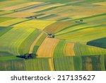aerial view of agricultural... | Shutterstock . vector #217135627