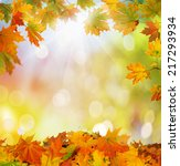 autumn background  | Shutterstock . vector #217293934