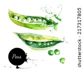 peas. hand drawn watercolor... | Shutterstock .eps vector #217317805