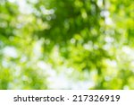 bright green and white blur...   Shutterstock . vector #217326919