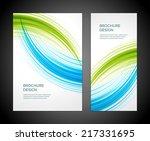 brochure business design... | Shutterstock .eps vector #217331695