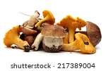 wild foraged mushroom selection ... | Shutterstock . vector #217389004