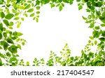 Green Leaf Frame Isolated On...