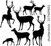 deer black and white silhouette ... | Shutterstock .eps vector #217409851