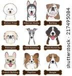 dog   nameplate | Shutterstock .eps vector #217495084