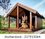 German Shepherd Resting In Its...