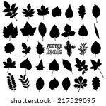 silhouette leaf set  vector... | Shutterstock .eps vector #217529095