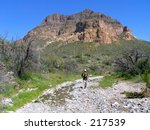 hiker in a creek bet with... | Shutterstock . vector #217539