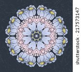 circular ornament. vector | Shutterstock .eps vector #217573147