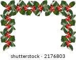 a frame of bird berries | Shutterstock . vector #2176803