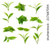 green tea leaf isolated on... | Shutterstock . vector #217687054