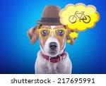 beautiful playful dog on a blue ... | Shutterstock . vector #217695991