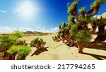 joshua trees in usa national...