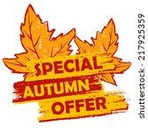 special autumn offer banner  ... | Shutterstock .eps vector #217925359