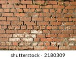 Old brick wall with plants growing through the mortar - stock photo
