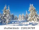 unbeliavable frosty morning in... | Shutterstock . vector #218134789
